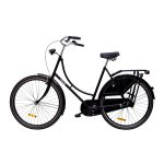 Heine Rijwielen oma fiets 5